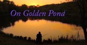 On Golden Pond @ .ZACK | St. Louis | Missouri | United States