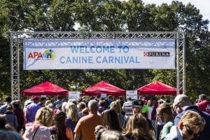 APA Canine Carnival @ Tilles Park, Ladue MO